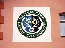 Logo Nadleśnictwa wykonane tynkiem aktylowym